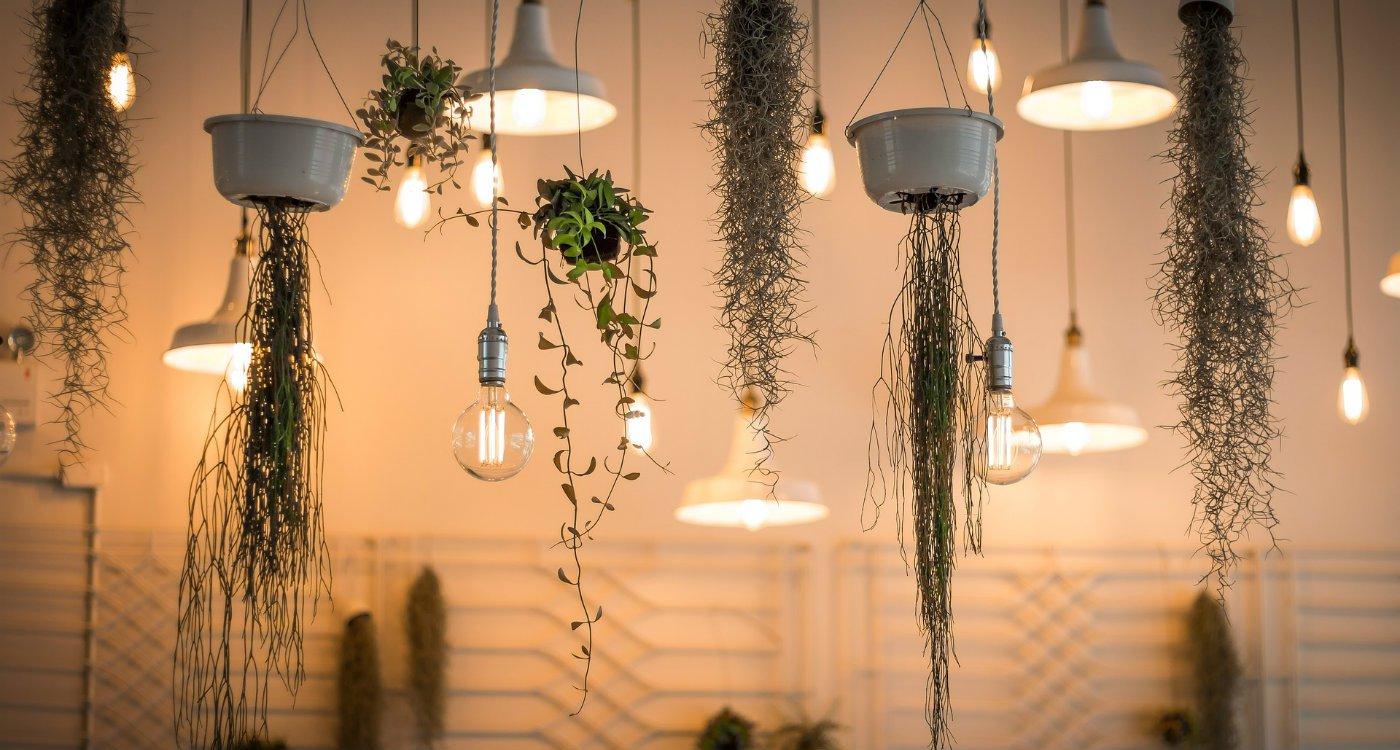 Landlord fines energy efficiency tenants renting letting renter electrician.jpg