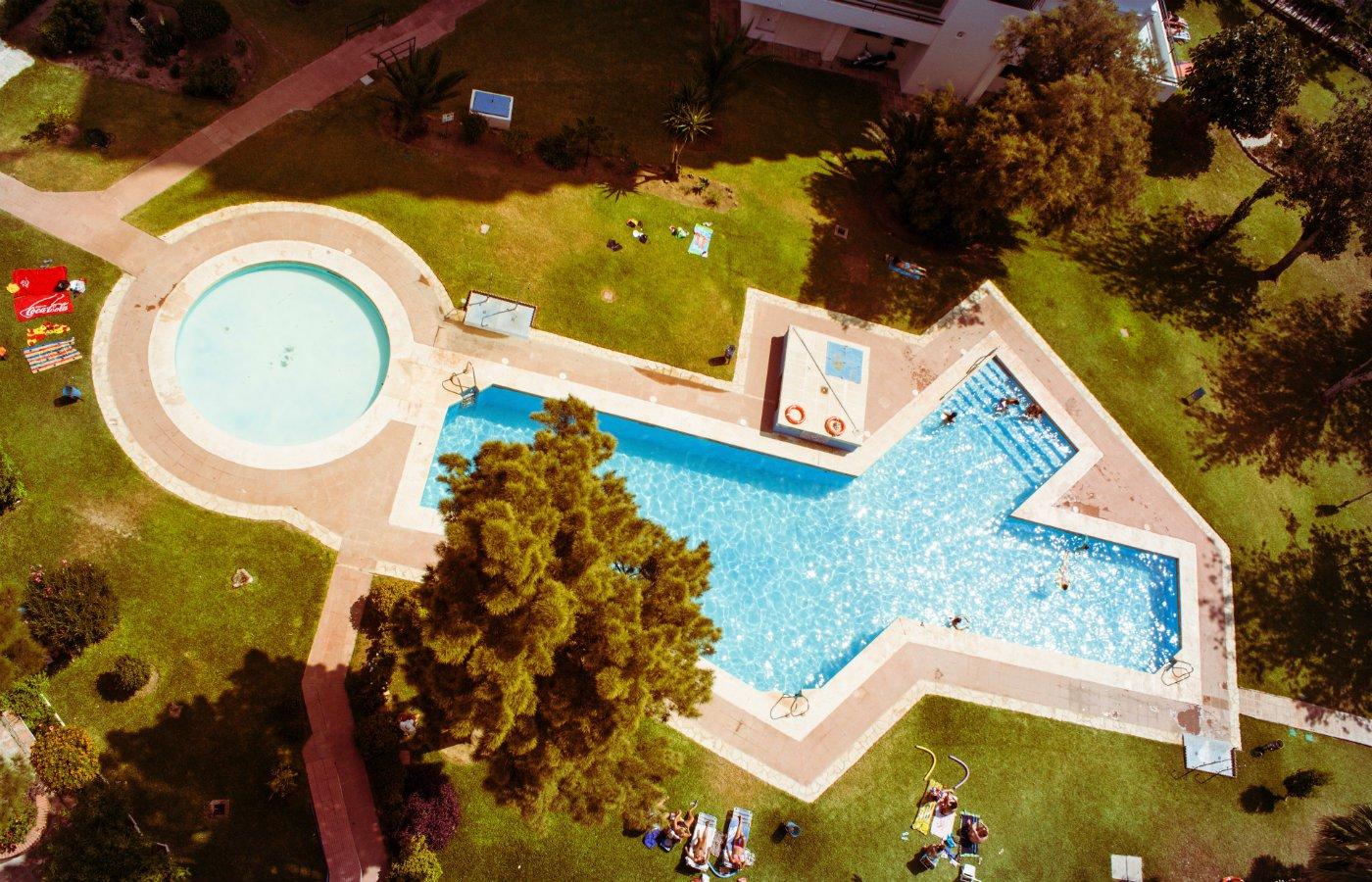 Pool garden installation.jpg