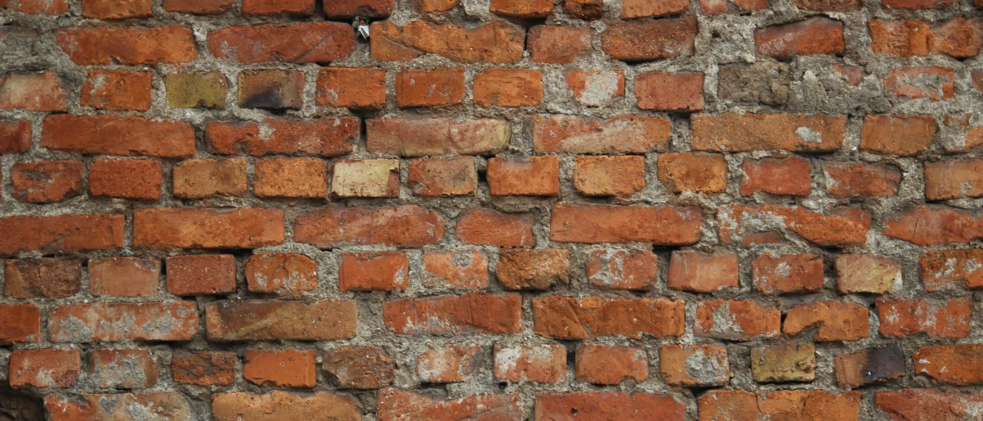 Repointing a Wall .jpg