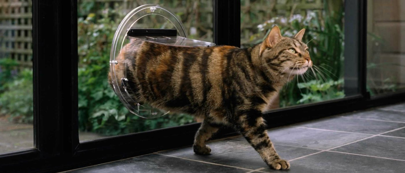 Can i install a cat flap in a glass door cat flap planetlyrics Gallery