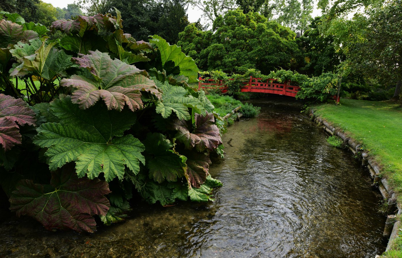 garden water feature idea stream.JPG