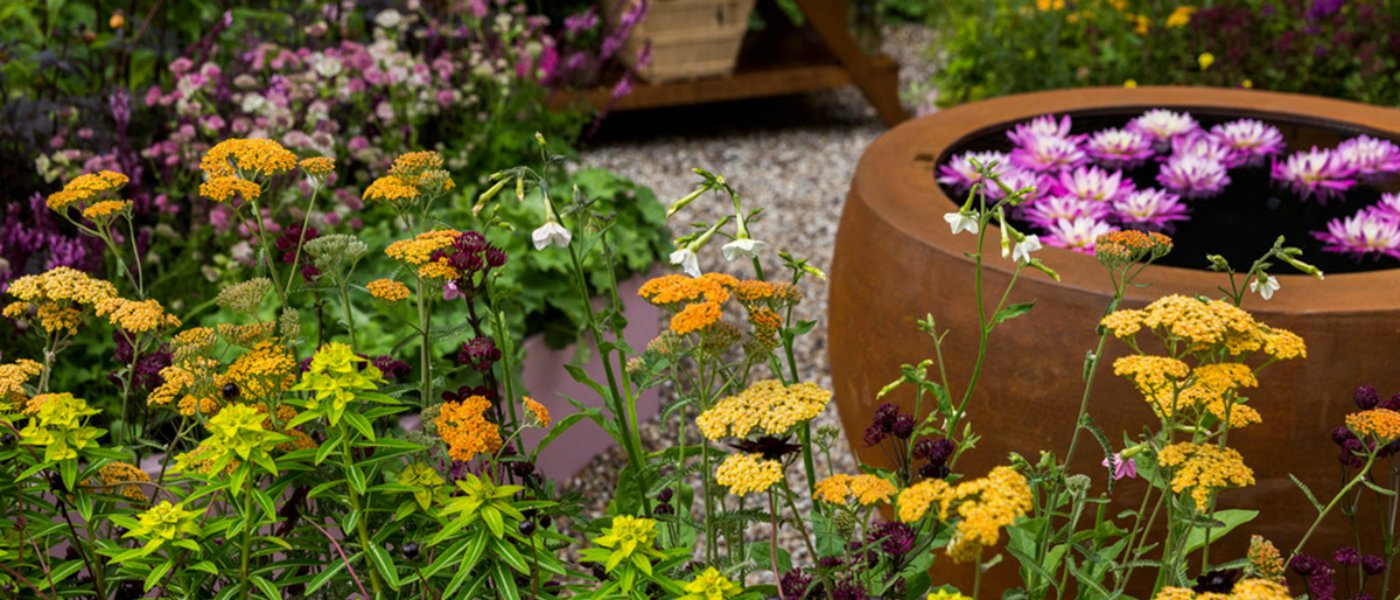 Biggest Gardening Trends For