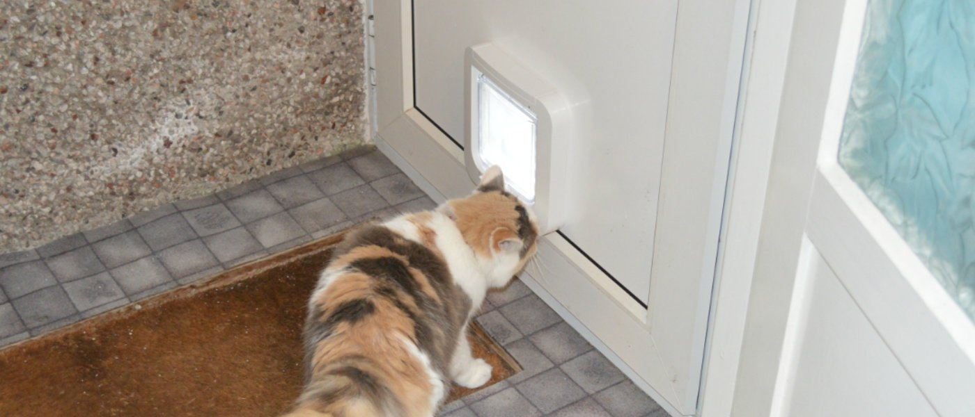How To Install Cat Flap Upvc Door
